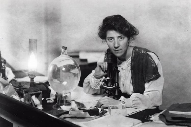 Marie Stopes, 1904