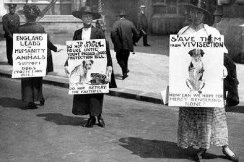Állatkínzás-ellenes tüntetés, 1919 (Forrás: Cruelty-Free International)